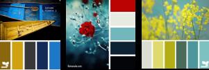 Striking Colour Palettes lift the soul